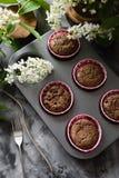 Smakowity domowej roboty ciasto Czekoladowi słodka bułeczka z ptasią wiśnią kwitną na ciemnym tle fotografia stock