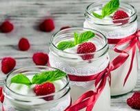 Smakowity jogurt z malinkami i mennicą w szkle zgrzyta, selectiv Obrazy Royalty Free
