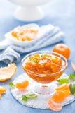 Smakowity mandarynka pomarańczowy dżem Tangerine confiture, marmolada fotografia royalty free