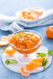 Smakowity mandarynka pomarańczowy dżem Tangerine confiture, marmolada zdjęcie stock