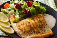 Smakowity piec rybi polędwicowy Arktyczny przypala i świezi warzywa zamknięci Zdjęcia Royalty Free