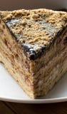 Smakowity ptysiowy czekoladowy tort Fotografia Royalty Free