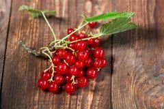 Smakowity rodzynek dojrzałe owoce obecna czerwony Zdjęcie Royalty Free