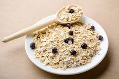 Smakowity zdrowy i żywienioniowy śniadanie: domowej roboty oatmeal z czernią obrazy royalty free