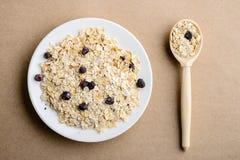 Smakowity zdrowy i żywienioniowy śniadanie: domowej roboty oatmeal z czernią obrazy stock