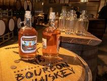 Smaksatt whisky för sött te fotografering för bildbyråer