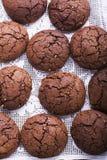 Smaksatta kakor för choklad Royaltyfria Bilder