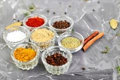 Smaktillsatsbakgrund Torkad krydda- och ?rtsmaktillsats med nytt och fotografering för bildbyråer