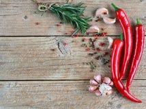 Smaktillsatser och kryddor - rosmarin, vitlök, rosa färger och svartpeppar, chili Arkivbilder