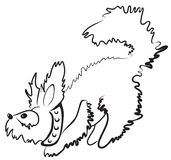 Smal fluffy dog. Simple monochrome fluffy dog character drawn with minimum strokes Royalty Free Stock Image
