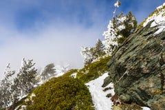Smal fotvandra slinga på lutningarna av monteringen San Antonio (Mt Baldy) som täckas i snö på en vinterdag; dimma som stiger frå arkivbild