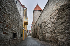 Smal gata i gamla Tallinn Arkivfoto