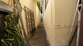 Smal gränd för tappningpastell mellan väggar med hundsammanträde i mitt royaltyfri foto