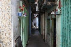 Smal gränd i Ho Chi Minh Arkivbild