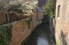 Smal kanal i Leuven fotografering för bildbyråer