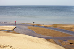Smal river mouth Stock Images