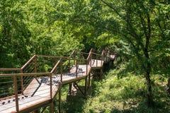 Smal upphängningbro eller hängeväg på den territoriumOkatse canen Arkivfoto