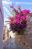 Smala gator av Lindos den gamla staden, Rhodes ö, Grekland arkivfoto