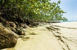 Smala liten vikflöden sandpapprar ändå stranden Arkivfoton