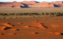 Small 4x4 in big namib desert stock photography