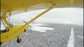 Small_Airplane_Flyby_Over_Winter_Forest vídeos de arquivo