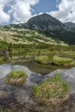 Small alpine lake poster with green vegetation and white summer clouds in background. In Retezat, Romania Stock Photography
