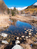 Small alpine mountain pond in fall - Val Ferret, Courmayer Royalty Free Stock Photo