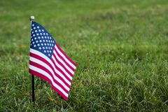 Small American flag on the grass stock images