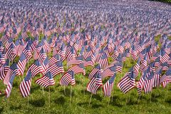 Small American Flags Closeup. Large group of small American flags on a park lawn, extending into the distance Royalty Free Stock Photos
