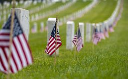 Small American flag at National cemetary - Memorial Day display. Small American flags and headstones at National cemetary- Memorial Day display Stock Photography