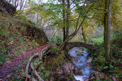 Small ancient bridge of rocks in a creek in the woods Stock Image