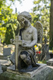 Small Angel Royalty Free Stock Images