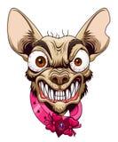 Small angry dog Stock Image