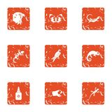 Small animal icons set, grunge style. Small animal icons set. Grunge set of 9 small animal vector icons for web isolated on white background stock illustration