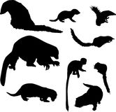 Small animal silhouettes collection Royalty Free Stock Images