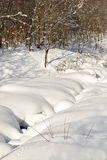 Small animal tracks beside a snow covered stream. Small animal tracks running beside a snow covered stream during winter Stock Photography