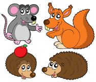 Small animals collection. Vector illustration Royalty Free Stock Photo