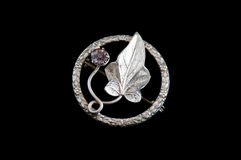 Small antique leaf brooch Stock Image