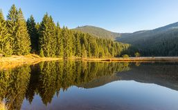 Small Arber lake in the autumn, Bavaria, Germany.  Stock Image