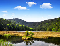 Small Arber Lake. In National Park Bavarian Forest - Germany Royalty Free Stock Photos