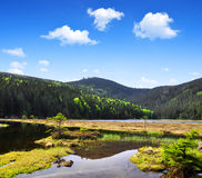 Small Arber Lake. In National Park Bavarian Forest - Germany Stock Image