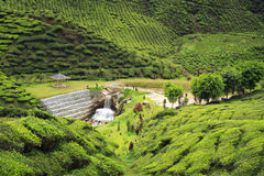 Small arbor and human made waterfall surrounded by hills. Covered with tea bushes - tea plantation Stock Photos