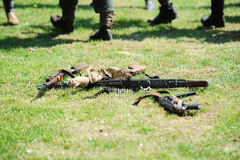 Small arms in a grass. Royalty Free Stock Images