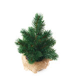 Small artificial Christmas tree isolated Royalty Free Stock Images