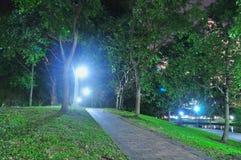 Small ascending path at Punggol Park Stock Photos