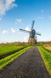 Small asphalt road leading to an old hollow post mill. Small asphalt road leading to an old wooden hollow post mill in a Dutch polder in the fall season royalty free stock image