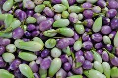 Small aubergines Stock Image