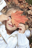 Small in autumn forest with yellow maple leaves Royalty Free Stock Photo