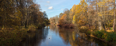 Small autumn river Stock Photography