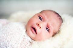 Small babe Royalty Free Stock Photo